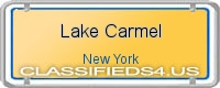 Lake Carmel board
